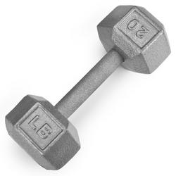 20lb Cast Iron Hex Dumbbell